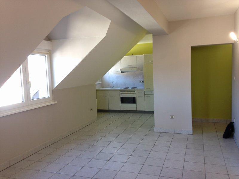Sarreguemines immobilier